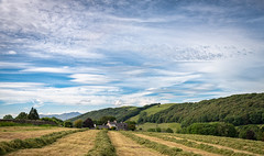 18th June 2019 (Rob Sutherland) Tags: sparkbridge crakevalley lowick cumbria cumbrian lakes lakeland lakedistrict england english uk britain british field farm farming agriculture grass meadow silage crop hay agricultural country rural countryside traditional nationalpark ldnp