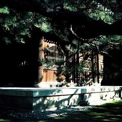 京散歩 (deco_o) Tags: 2016 airesreflexz analog film kodak portra160 旅 京都 kyoto