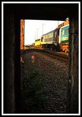 Brunditts - 17th WAG (peterdouglas1) Tags: transportforwales brunditts llanfairfechan wag dbcargo oldbuildings valerian