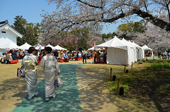 KYO_Nijo_Castle_24 (chiang_benjamin) Tags: kyoto japan nijocastle spring cherryblossom flowers trees kimono