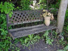 Nadia Kajouji's derelict memorial bench in Brantwood Park in Ottawa, Ontario (Ullysses) Tags: nadiakajouji suicide carletonuniversity williammelchertdinkel ottawa ontario canada spring printemps brantwoodpark cleggstreet memorial bench banc student étudiante rideauriver riviererideau