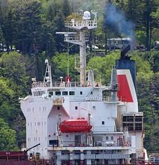Ferbec - IMO 9259848 (J. Trempe 3,960 K hits - Merci-Thanks) Tags: stefoy quebec canada ship navire fleuve river stlaurent stlawrence vraquier bulker ferbec
