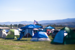Show me your kitties (daniel.lih.photography) Tags: freelensing freelens 2019 june canonbody nikonlens summer paradiso paradiso2019 party rave concert gorgeamphitheatrecampground gorge amphitheatre campground gorgeamphitheatre campsite camping camp musicfestival music festival showmeyourkittiesflag showmeyourkitties flag tents tent washington