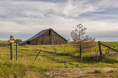 Old Barn (NikonDigifan) Tags: barn rural farming agriculture scenic country clouds goldenhour washington pacificnorthwest rustic dilapidated nikond850 nikon28300 nikon mikegassphotography