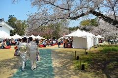 KYO_Nijo_Castle_25 (chiang_benjamin) Tags: kyoto japan nijocastle spring cherryblossom flowers trees kimono