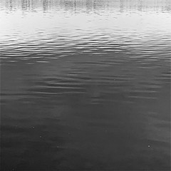 water study (Chris Blakeley) Tags: seattle hipstamatic water lake greenlake bnw