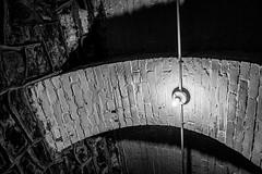 Arch (JCTopping) Tags: stone conduit arch lightbulb masonry biltmore brick blackandwhite tunnel dark asheville northcarolina unitedstatesofamerica