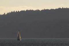 My Seattle: Vashon Island (RPahre) Tags: seattle washingtonstate pugetsound sailing sailboat boat vashon vashonisland