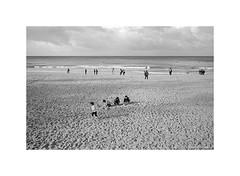 Manly beach, Sydney 2019  #956 (lynnb's snaps) Tags: 35mm cvultron35mmf2vintagemmo id11 ilfordhp5 leicacl manly bw blackandwhite film cvultron35mmf2vintagemmount leicafilmphotography sydney australia rangefinderphotography bianconegro blackwhite biancoenero bianconero blancoynegro noiretblanc schwarzweis monochrome ishootfilm filmfilmforever filmneverdie manlybeach beach sand play