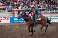 Ponoka Stampede 2016 (tallhuskymike) Tags: ponoka stampede event ponokastampede 2016 cowboy horse wpca worldprofessionalchuckwagonassociation action alberta western racing race