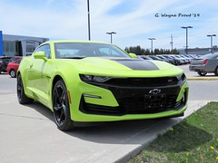 2019 Chevrolet Camaro SS (Gerald (Wayne) Prout) Tags: 2019chevroletcamaross 2019 chevrolet camaro ss timminsgarageinc riversidedrive mountjoytownship cityoftimmins northeasternontario ontario canada prout geraldwayneprout canon canonpowershotsx60hs powershot sx60 hs digital camera photographed photography gm generalmotors automobile car auto musclecar sportscar performance vehicle city timmins garage riverside drive mountjoy township northernontario northern northeastern