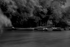 The Boats (JCRM6) Tags: boats lake water pond hainaultforest monochrome balckandwhite