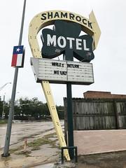 Shamrock Motel (plasticfootball) Tags: texarkana texas motel shamrock neonsign
