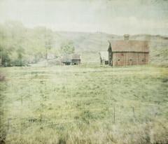 red barn (jssteak) Tags: canon colorado ruralfarm barn abandoned greentrees aged vintage morning fade
