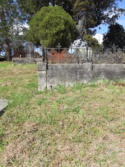 Roman Catholic Division A, Row 2, Plot 32 (Discover Waikumete Cemetery) Tags: waikumetecemetery grave