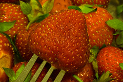 Berry Time (ramseybuckeye) Tags: macromondays stylingfoodonafork styling food fork