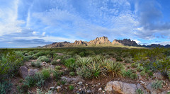 Chihuahuan Desert View (BongoInc) Tags: newmexico organmountains chihuahuandesert