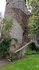 Castle Stairway (MartinAJ21) Tags: ireland castle destination tourist wall stone medieval history travel building stairway ivy plants