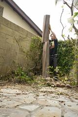 Felling Trees (evaxebra) Tags: ryan tree chainsaw cutting pushing