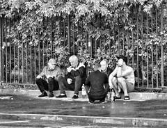 five good guys (Sergei_41) Tags: tz100 panasonic lumix россия город москва монохром люди пьяный алкоголь russia чб russianphoto russianreality city cityscape citylife moscow holiday alcohol alcoholic drunk deaddrunk monochrome monochromatic urban people guys street streetphoto streetphotographer streetlife streetphotography wb bw bwstyles noir blackandwhite blackandwhitephoto blackwhite blancoynegro blackandwhitephotography bnw bnwlife bnwmood bnwcity summer drank drinking wasted rain asphalt
