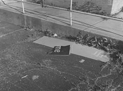 '873 (evacuateup) Tags: fujigs645s hp5 xtol11