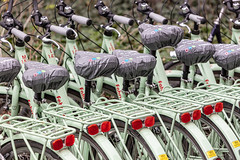 Green options (A Different Perspective) Tags: germany munster bicycle carrier city cycle green red rental seat