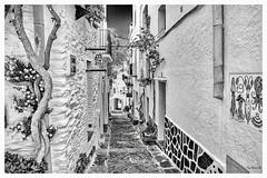 Le Charme de Cadaqués (Pyc Assaut) Tags: le charme de cadaqués lecharmedecadaqués noir blanc black white noirblanc espagne catalunya spain costabrava ruelle maisons mur pyc5pycphotography pycassaut pierreyvescugni pierreyvescugniphotography extérieur z6 nikonz6 nikon