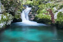 Pure Cascade in the Forest (brendatharp) Tags: pure slovenia waterfall forest water stream pristine cascade fresh europe tranquil nature flowing peaceful rushing