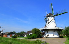 Bovenrijge & de Widde Meuln in Ten Boer/Midden Groningen (willi.kampf) Tags: bovenrijgedewiddemeulnintenboermiddengroningen bovenrijge dewiddemeuln windmolen windmill windmühle mill mühle molina niederlande netherlands molen middengroningen