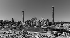 1332-3SE The Temple of Apollo at Didyma, Turkey (foxxyg2) Tags: greece classics classicalgreece history temples templeofapollo didyma turkey mono monochrome bw blackwhite silverefects niksoftware dxo