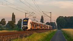 Haldern Siemens Desiro HC Nationalexpress 482 031-462 021 (Rob Dammers) Tags: deutschland nordrheinwestfalen haldern rrx nationalexpress re5 rheinrurxpress zug
