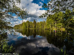 Transjö 062019 03 (U. Heinze) Tags: schweden sverige sweden smaland himmel sky wasser see olympus penf