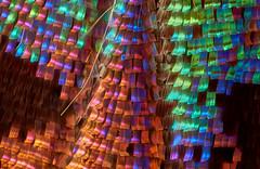 Chrysiridia Rhipheus Rainbow Scales (Macro Cosmos Microscopy) Tags: mitutoyo mplan apo 10x macro micro photomacrography nikon d810 thorlabs stackshot zerenestacker focusstacking mitutoyomplan10xapo microscopy chrysiridia rhipheus rainbow scales butterfly moth sunset sunsetmoth madagasca madagascar