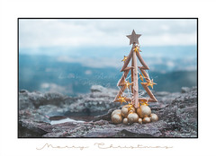Christmas tree with gold lights and mountain backdrop (sugarbellaleah) Tags: christmas tree seasonal holiday bluemountains australia christmastree stars lights baubles gold driftwood timber wooden rustic golden teal cliff mountain valley cold christmasinjuly rock faith religion holy celebration decoration ornament katoomba background copyspace peace goodwill happyholidays merrychristmas nature outdoors