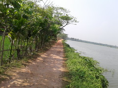 Village street (ahashik) Tags: ayemun hossain ashik ahashik ayemunhossainashik street village bangladesh