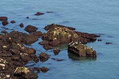 Great Orme-E6101672 (tony.rummery) Tags: em10 greatorme llandudno mft microfourthirds omd olympus rocks seascape wales unitedkingdom