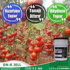 profert domates (Profert Gübre) Tags: fertilizer profert gübre agro tarım çiftçi sebze sebzecilik seracılık sera sulama seed soil stres