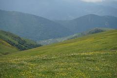 Trabzon/Derinoba Yaylası (MetalWave) Tags: trabzon yayla sony a7 full frame