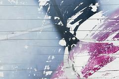 Color (A. Bockheim) Tags: color d7100