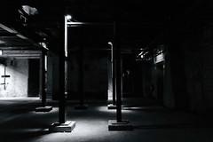 From The Underworld (RadarO´Reilly) Tags: dortmund zechezollern maschinenhalle keller unterwelt underworld lichtschatten architektur architecture sw schwarzweis bw blackwhite blanconegro monochrome noiretblanc zwartwit nrw