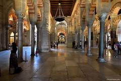 Diferentes luces (ricardocarmonafdez) Tags: córdoba mezquíta catedral arquitectura architecture people cathedral mosque mood perspectiva perspective nikon d850 nikkor1424f28ged luces sombras lights shadows color