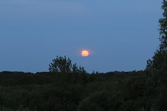 Moon rise (roger_forster) Tags: alvervalley moon rise gosport hampshire