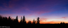 Sunset on the Sods (KRHphotos) Tags: trees westvirginia landscape sunset monongahelanationalforest nature stars nightphotography dollysods