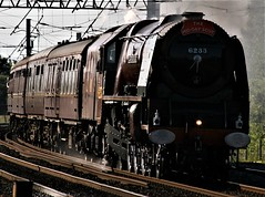 Power of a Duchess (Nigel Valentine) Tags: 6233 duchess sutherland lms maroon steam winwick warrington