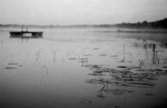 Morning Over Lake (PositiveAboutNegatives) Tags: leica slr leicaflexsl 50mm 50mmsummicron leicar film analog bw blackandwhitefilm fomapan fomapan100 coolscan rodinal 150 florida lake pond mist morning daybreak
