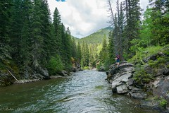 Fishing the Upper Oldman River (K.R. Alexander) Tags: landscapes nikond600 water river fishing southern alberta canada