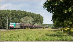 LINΞΛS 2905 @ Rebaix (Wouter De Haeck) Tags: belgië belgique belgien infrabel l90 denderleeuw saintghislain hainaut henegouwen rebaix ath lineas hle29 br186 bombardier traxx f140ms atc alphatrains cargo güterzug freighttrain traindemarchandise glucose aalst neslesomme