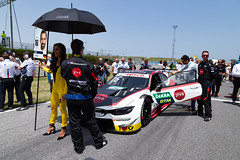 "DTM Misano 2019 • <a style=""font-size:0.8em;"" href=""http://www.flickr.com/photos/144994865@N06/48091612837/"" target=""_blank"">View on Flickr</a>"