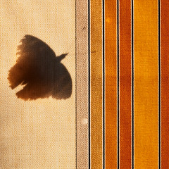 HFP#NIAESN butterfly (HFPhoto1) Tags: lightshade shadeofabutterfly patternofcolor patternofstripes fabric