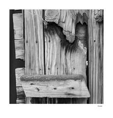 Shade (agianelo) Tags: wood fence monochrome bw bn blackandwhite